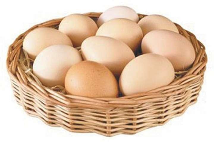Лікарі розповіли про корисні і шкідливі дози вживання яєць